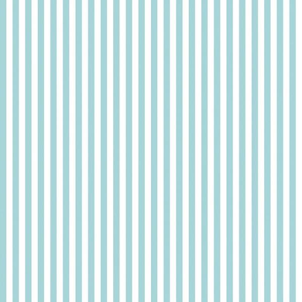 "Riley Blake 1/4"" Stripe Aqua"