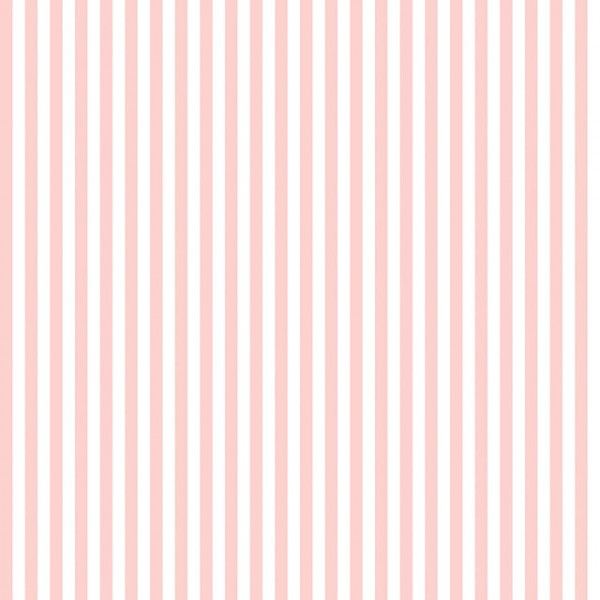 "Riley Blake 1/4"" Stripe BapyPink"